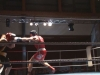 boxen-hst-10-2009-26