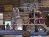 boxer-oschatz-02-13-3