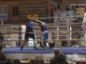 boxer-oschatz-02-13-5