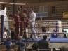 boxer-oschatz-02-13-6