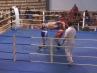 boxer-oschatz-02-13-9
