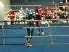 lm-halbfinale-hro-03-10-7