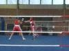 boxen-teterow-04-10-11