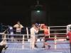 dm-boxen-12-2010